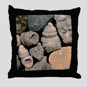 Assortment of fossils from the Siluri Throw Pillow