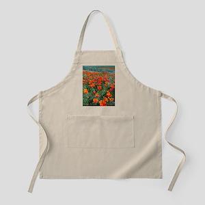 Californian Poppies (Eschscholzia) Apron