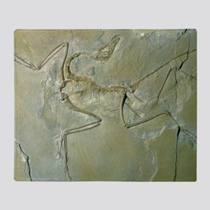 Archaeopteryx fossil Throw Blanket