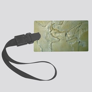 Archaeopteryx fossil Large Luggage Tag