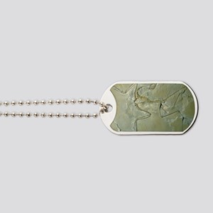 Archaeopteryx fossil Dog Tags