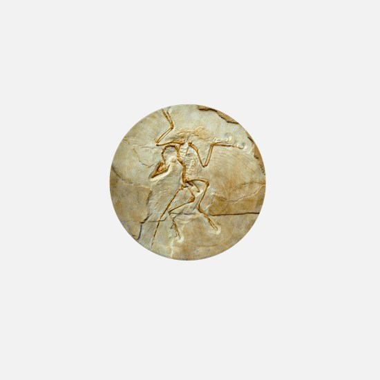 Archaeopteryx fossil, Berlin specimen Mini Button