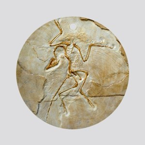 Archaeopteryx fossil, Berlin specim Round Ornament