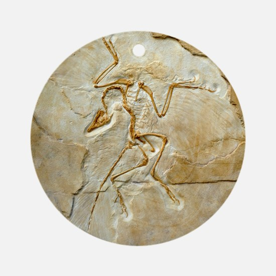 Archaeopteryx fossil, Berlin specim Round Ornament