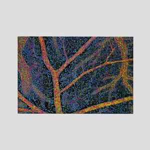 Brain tissue blood supply Rectangle Magnet