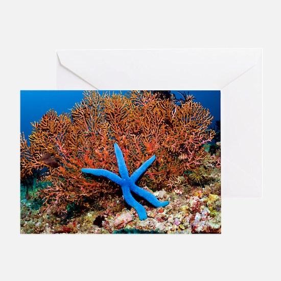 Blue seastar Greeting Card