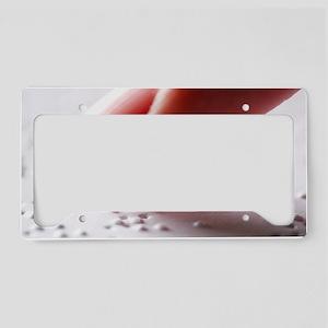 Braille reading License Plate Holder