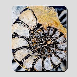 Ammonite fossil Mousepad