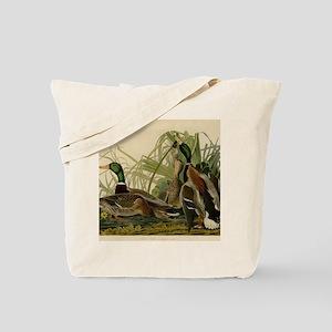 Mallard duck Audubon Bird Vintage Print Tote Bag