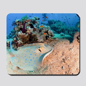 Blue-spotted stingray Mousepad