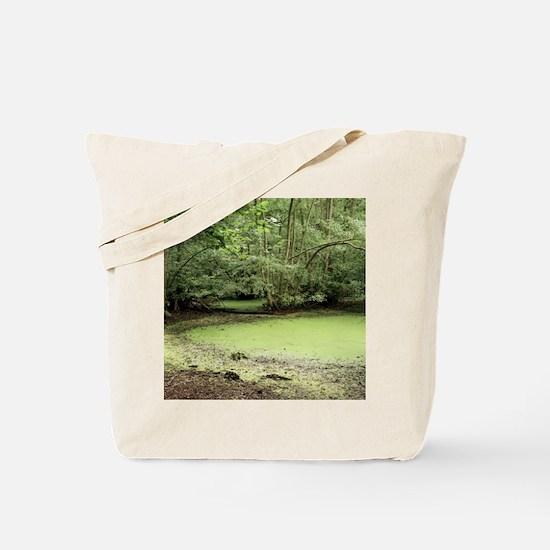Algal bloom in pond Tote Bag