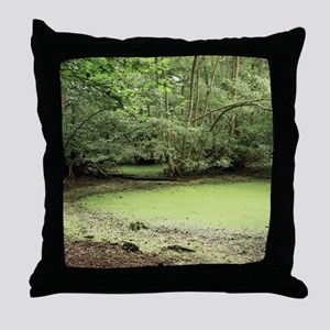 Algal bloom in pond Throw Pillow