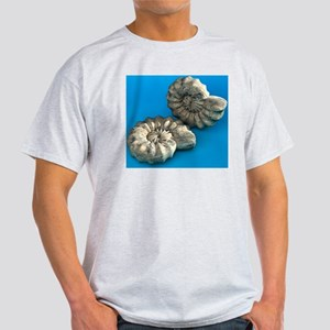 Ammonite fossils Light T-Shirt