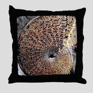 Ammonite fossil Throw Pillow