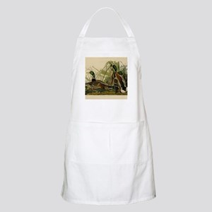 Mallard duck Audubon Bird Vintage Prin Light Apron