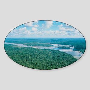 Aerial view of Rio Napo, eastern Eq Sticker (Oval)
