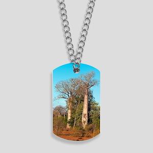 Adansonia madagascariensis baobab trees Dog Tags