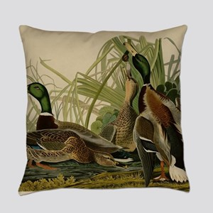 Mallard duck Audubon Bird Vintage Everyday Pillow