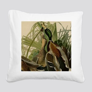 Mallard duck Audubon Bird Vin Square Canvas Pillow