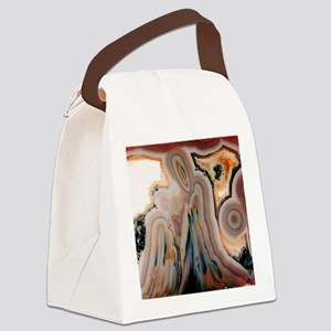 Agate slice Canvas Lunch Bag