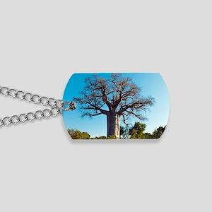 Adansonia madagascariensis baobab tree Dog Tags
