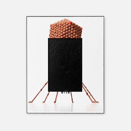 Bacteriophage, artwork Picture Frame