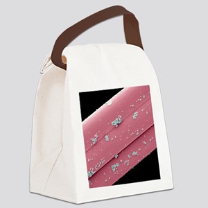 Antimicrobial wound dressing, SEM Canvas Lunch Bag