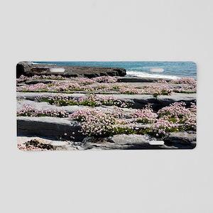 Armeria (Sea Thrift) Aluminum License Plate