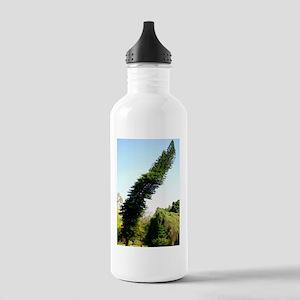 Araucaria columnaris Stainless Water Bottle 1.0L