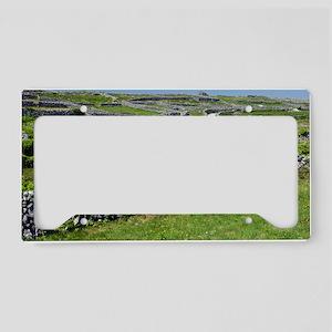 Ancient limestone fields License Plate Holder