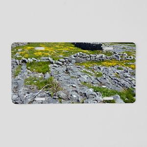 Ancient limestone fields Aluminum License Plate