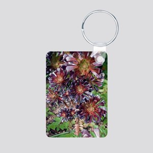 Aeonium arboreum 'Atropurp Aluminum Photo Keychain
