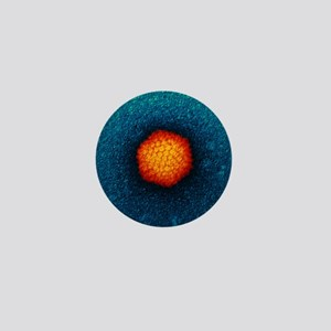 Adenovirus particle, TEM Mini Button