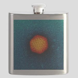 Adenovirus particle, TEM Flask