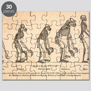 1863 Huxley from Ape to Man, age-toned Puzzle