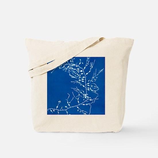 19th-century alga cyanotype Tote Bag