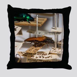 1840 click beetle ex Hope Westwood co Throw Pillow