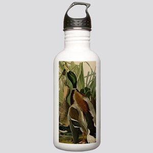 Mallard duck Audubon B Stainless Water Bottle 1.0L