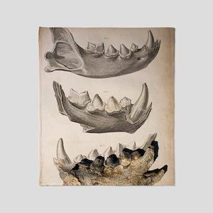 1823 William Buckland cave hyena fos Throw Blanket