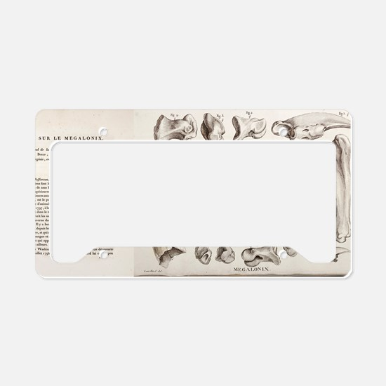1812 Jefferson's Megalonyx by License Plate Holder