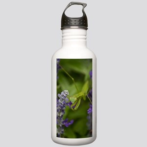 The Mantis Stainless Water Bottle 1.0L