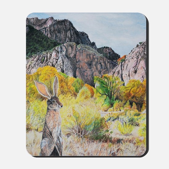 wild hare in Clear Creek Canyon Mousepad
