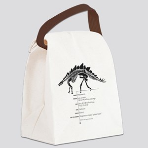 Stegosaurus Bones Canvas Lunch Bag