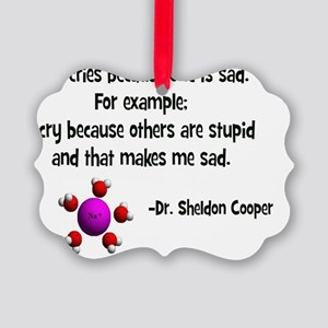 Others are stupid- Picture Ornament