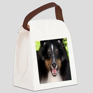 Tri Sheltie Head Study Canvas Lunch Bag