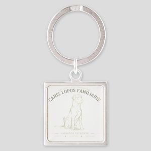 Vintage Labrador Square Keychain