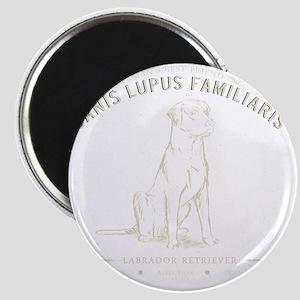 Vintage Labrador Magnet