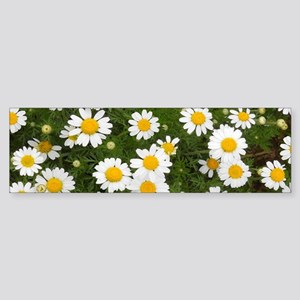 Daisy Day Mug Sticker (Bumper)