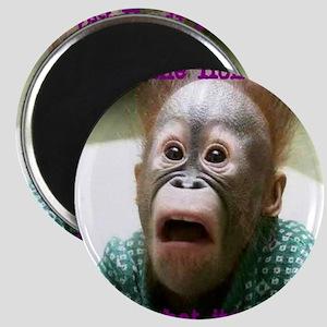 Hokey Pokey Orangutan Magnet