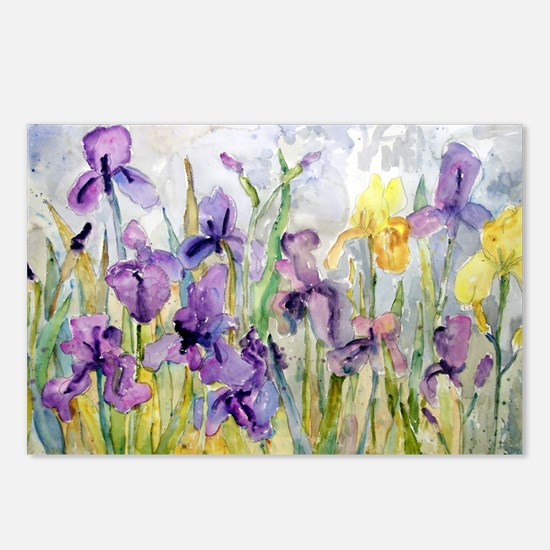 Purple and Yellow Iris Ro Postcards (Package of 8)